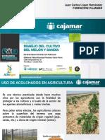 Uso de Acolchados en La Agricultura