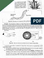 16047 Optical Fiber Notes From Subramanian 18-09-14!1!41 Pm Copy