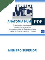 PPT-ANATOMIAHUMANA.pdf