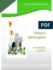 20150914 FormacionPlantasMedicinalesFarmaceutico-FitoterapiaTrastornosDigestivos