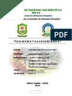 Universidad Nacional Agraría de La Selva (2)