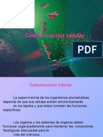 comunicacioncelular-090527102756-phpapp01