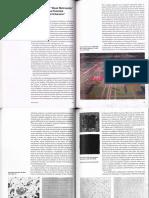 Charles Waldheim_Weak Work Andrea Branzis.pdf