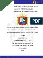 Bustincio_Cahui_Jesus.pdf