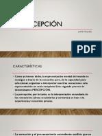 Percepción y Sentidos PDF