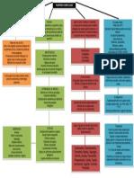 pUERPERIO COMPLICACIONES MAPA