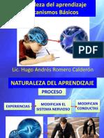 22- Naturaleza Del Aprendizaje