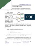 Teoria 19 Encoders.pdf