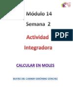 Geronimo Sanchez_Beatriz Del Carmen_M14S2_ Calcularenmoles