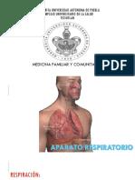 Anatomia Aparato Respiratorio.pptx