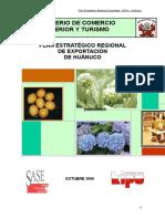 PERX_HUANUCO_FINAL.doc