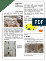 BOLETIN TECNICO 09- Reparacion de Presas Afectadas Por Reacciones Expansivas