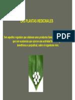 Las plantas medicinales.pdf