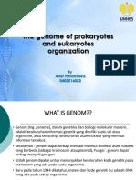 1 Organisasi Genom - Arif