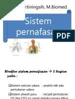 2. Sistem Pernafasan