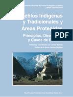 PAG-004-ES.pdf