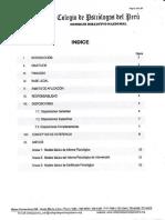Modelo Para Hacer Un Informe Psicologico
