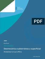 Brochure diplomado v3.pdf