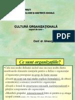1. Cultura organizationala_Introducere.pdf