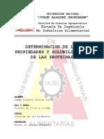 4.-Determinacion-de-las-propiedades-y-solubilizacion-de-las-proteinas.docx