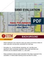 Shaly Sand.pdf