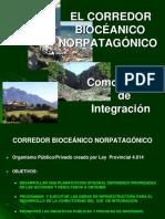 Corredor Bioceanico Norpatagonico - Presentacion