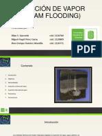 inyeccindevaporsteamflooding-130629162205-phpapp01
