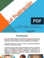 Frustracion Clase 2016 Seccion 08