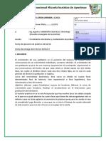 INFORME  N 6 OFELIA.docx