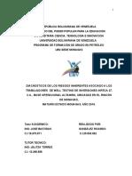 INFORME Corregido 11.5.2017