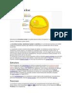 Envoltura nuclear.docx