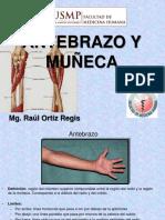Antebrazo y Muneca