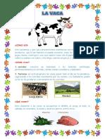 Vaca y Gallina