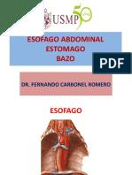 Esofago Abdominal Bazo
