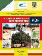 EL ÁRBOL DE SAPOTE.pdf