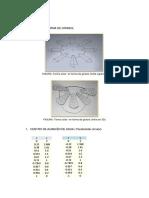 Terma Solar en Forma de Paraboloide Circular