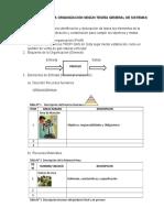 Descripción de La Organización Según Teoría General de Sistemas