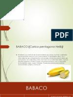 Babaco Presentacion