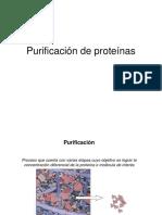 Purificacion2