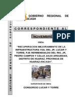 2. Informe Noviembre.docx