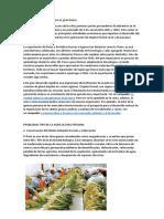 La Agricultura Peruana Tiene Un Gran Futuro