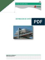 330312198-Manual-Distribucion-Del-Vapor.pdf