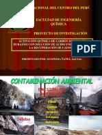 Diapositiva Activacion Quimica de Carbon de Pepa de Durazno (1)