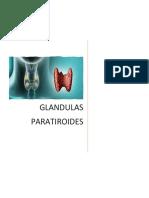 Glandulas Paratiroides