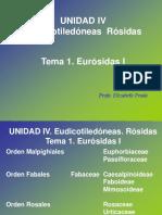 Unidad IV Tema 1 Eurosidas Fabidas