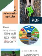 Perdida y Degradación de Los Suelos Agricolas