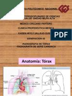 Tema 30. Serie Cardiaca y Radiografia de Torax