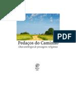 PEDAÇOS DO CAMINHO.pdf