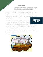 CICLOS BIOGENESICOS.doc
