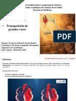Transposiciondelosgrandesvasos 151019010145 Lva1 App6892